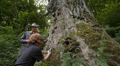 Mehr zu Uckermark Safari - Naturführungen mit Arno Schimmelpfennig