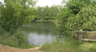 Mehr zu Lindensee, Badestelle Krummer See