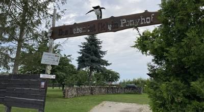 Mehr zu Ponyhof Seehausen