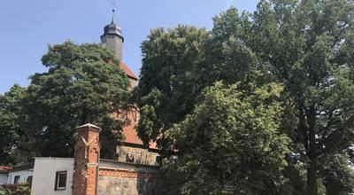 Mehr zu Dorfkirche Menkin