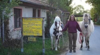 Mehr zu Pferdeträume - therapeutisch orientierter Pferdehof